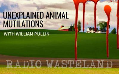 Unexplained Animal Mutilations With William Pullin