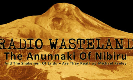 The Anunnaki Of Nibiru w/ Michael Feeley